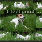 Collage: I feel good