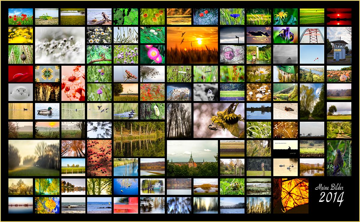 Collage meiner Bilder 2014