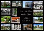 """Collage """"Natur in der Stadt"""""""