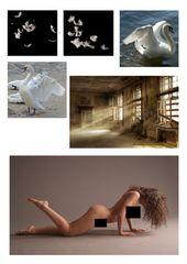 """Collage zu """"Die Rückkehr"""""""