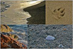 Collage#7: Sea Details