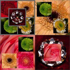 Collagen Potpourri mit Blumendiamanten