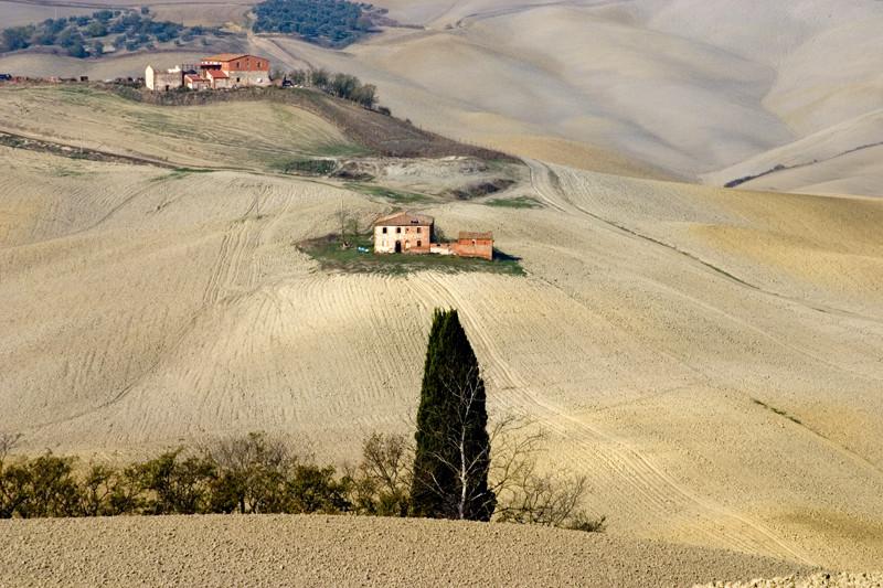 colline senesi in autunno - Crete 9