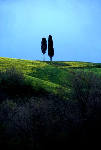 Colline Toscana