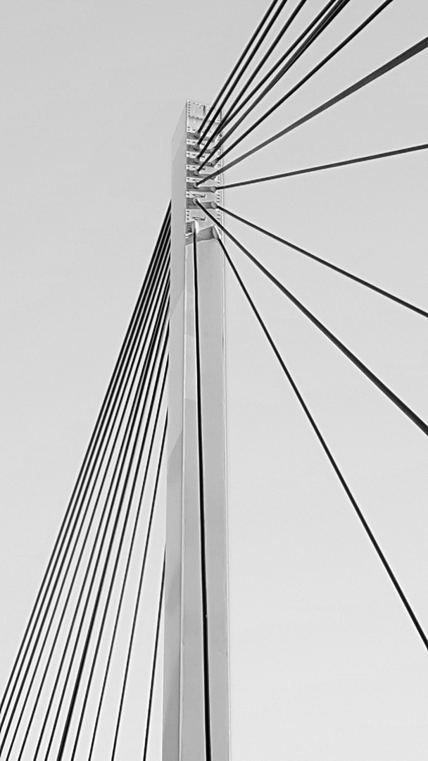 Collini Steg, Mannheim