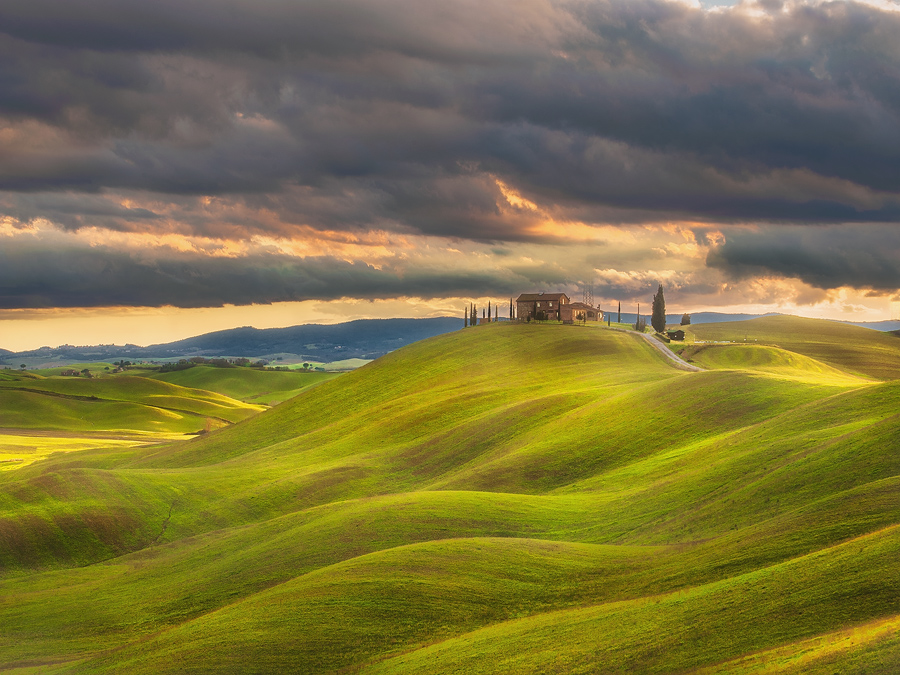 Color of spring/ Tuscany