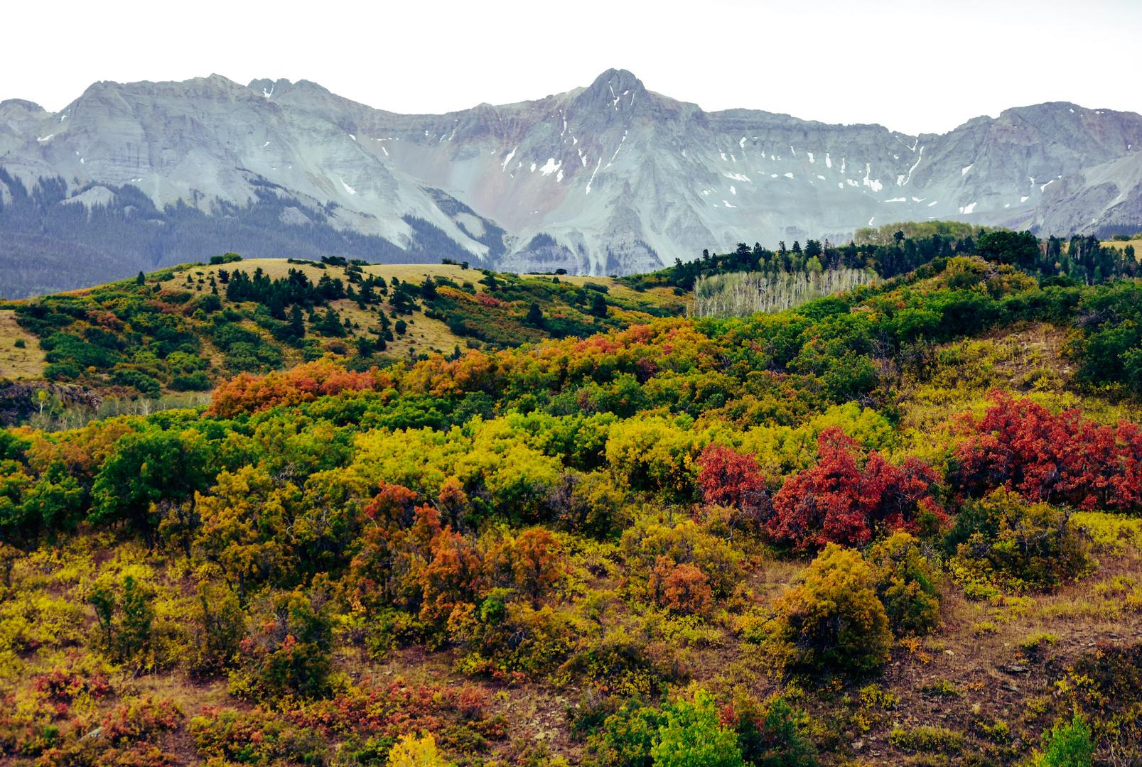 Colorado im Herbst  USA