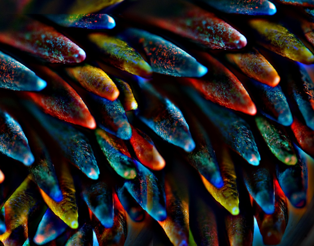 Colored Toothpick Abstract