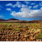 Colores de Fuerteventura