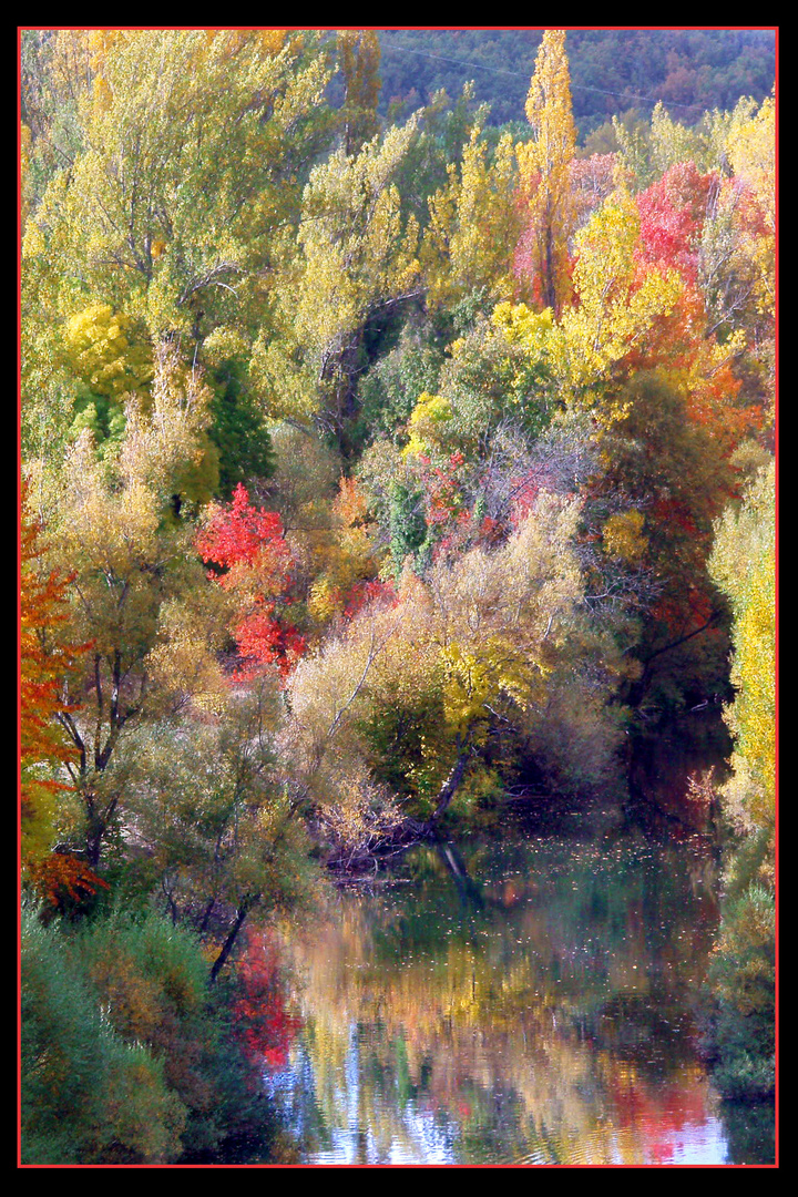 """""""colores de otoño"""""""