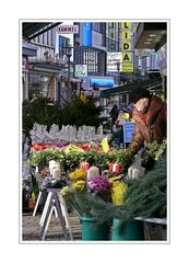 Colorful Street (Elberfeld City)