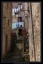 Colori della Toscana 2010 - I momenti italiano