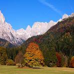 Colori di autunno - 10
