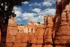Colors of Bryce Canyon - 4