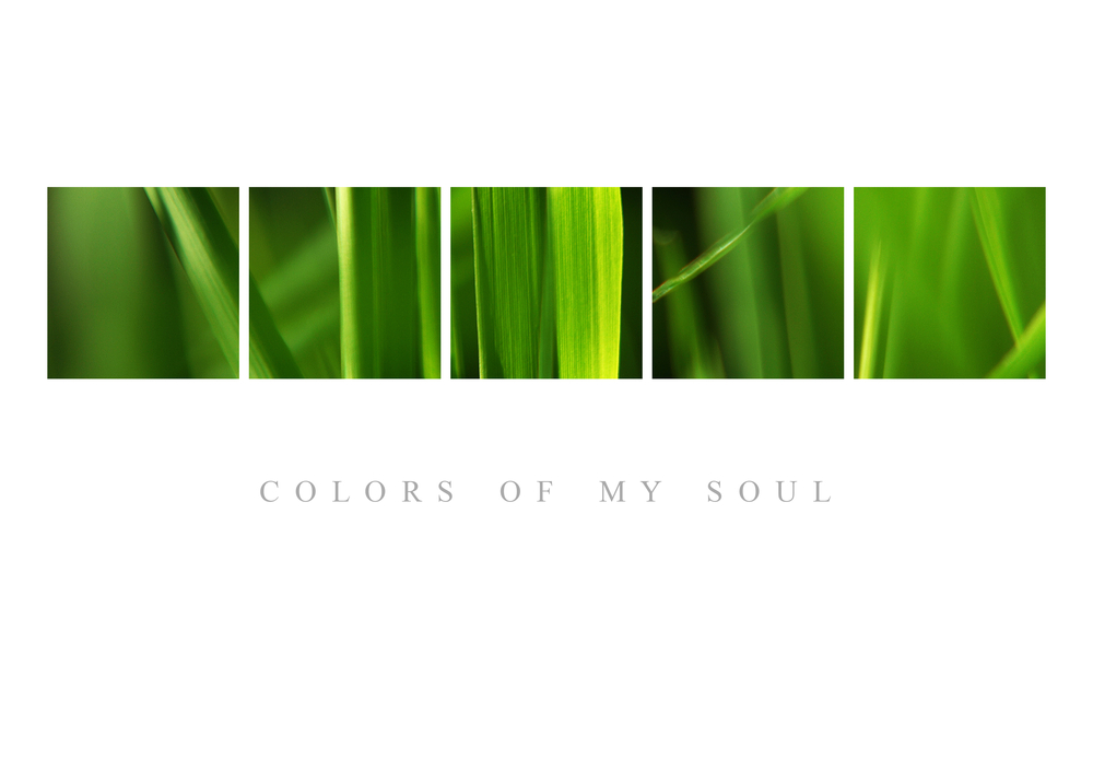 Colors of my soul