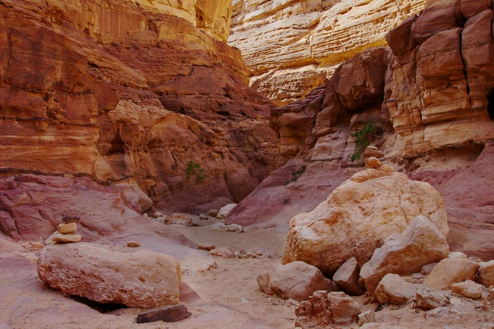 Colors of the Canyon 1