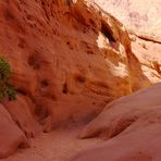 Colors of the Canyon 2