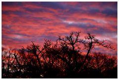 Colour of the sky 1