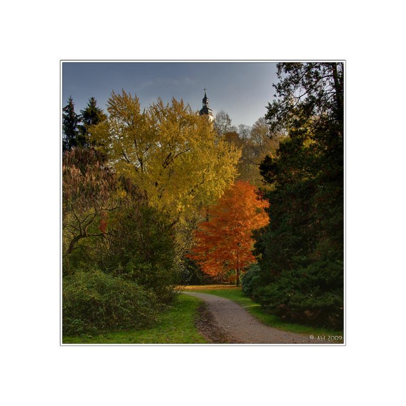 Colours Of Autumn (6)