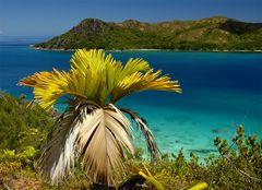 Colours of Seychelles