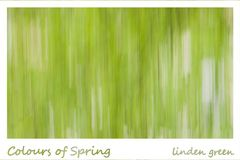 Colours of Spring - linden green