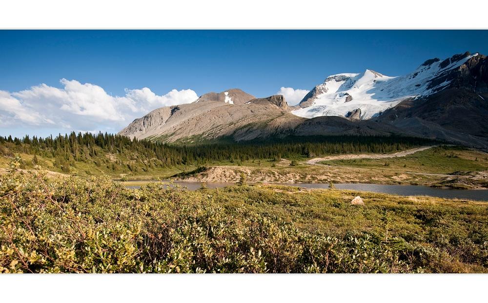 [ Columbia Icefield ]
