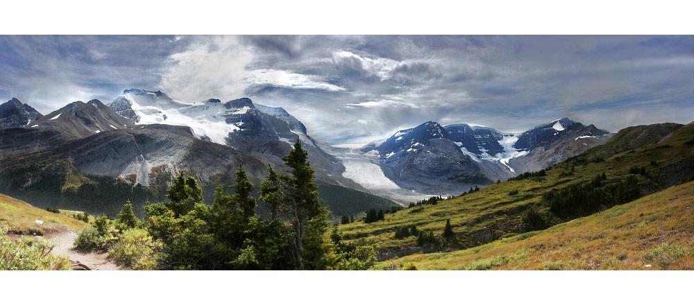 Columbia Icefield: Panorama