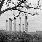 Columns ...