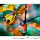 Come d'autunno