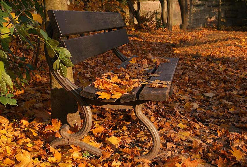 - come sit awhile with me -