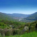 Com'è verde la mia valle...