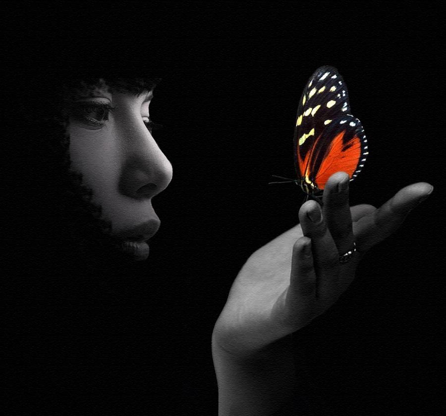 Come volo di farfalla...