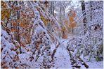 Cómo pesa la nieve (wie schwer der Schnee ist)
