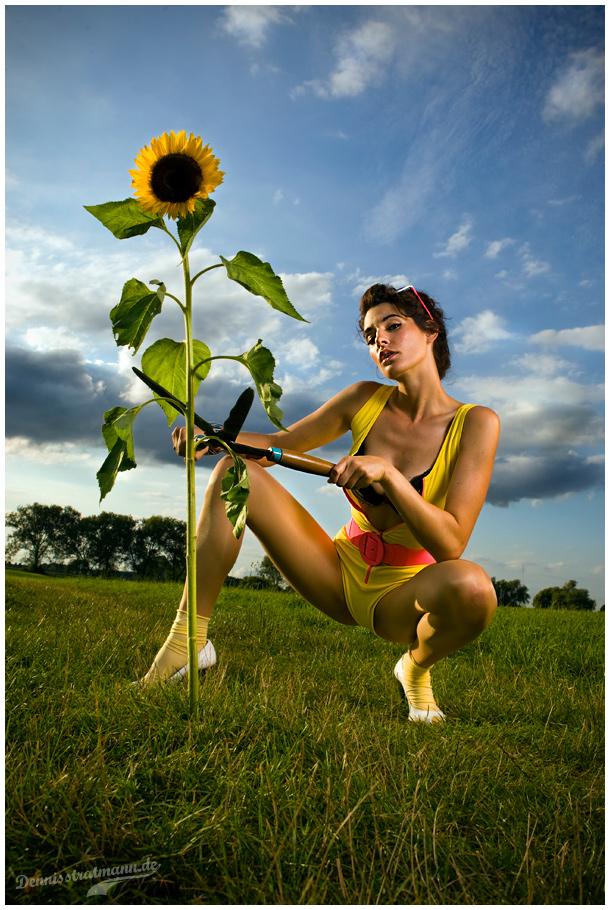 Complete gardener III