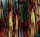 Composition aux bambous