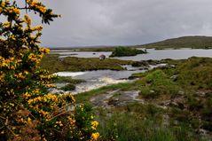 Connemara II