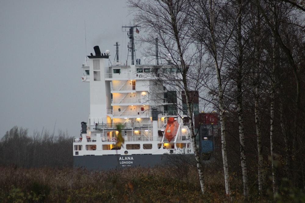 Container im Birkenwald