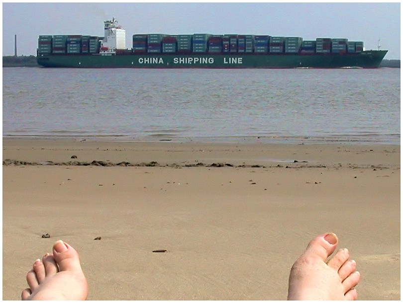 Container ship at the river Elbe