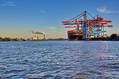 Container-Terminal im Grünen