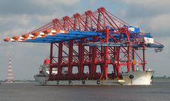 Containerbrücken werden geliefert