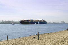 Containerschiff Elbe Strand Ovelgönne