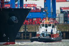 Containerschiff Kobe Express wird gedreht #6