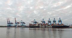 Containerterminal Altenwerder - Hamburg