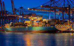 Containerterminal Burchardkai 2