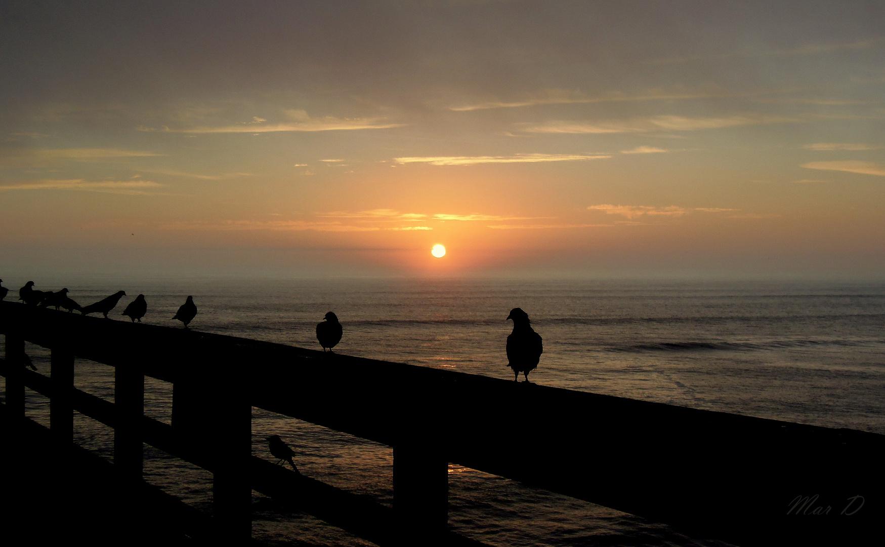 Contraluz de amanecer