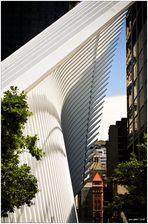 Contrasts in Lower Manhattan