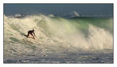 Coogee Surf