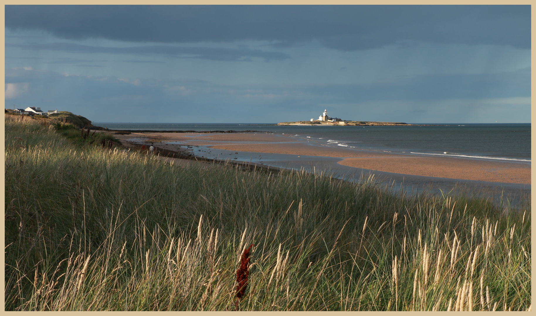 Coquet Island from the south 3