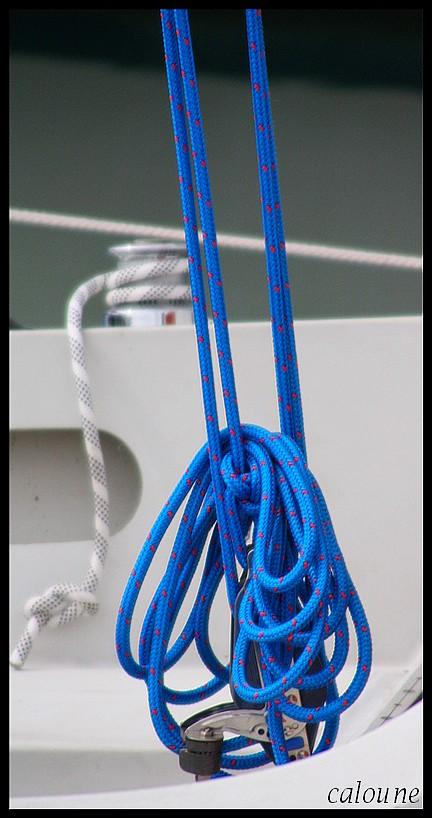 cordage