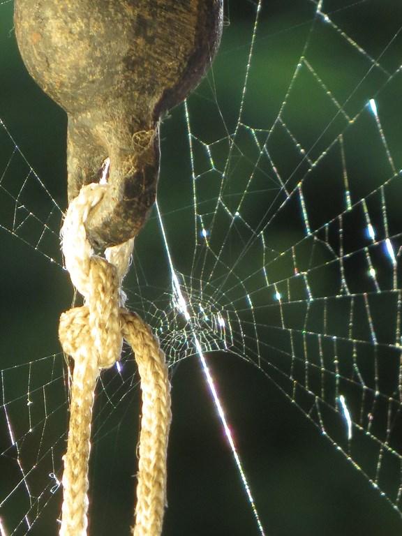corde, fer  et fil de soie